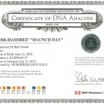 Southern Kennel's Haunchday Certificate DNA Analysis
