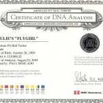 Paulie's Fly Girl Certificate Of DNA Analysis