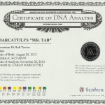 Marcattili's Mr. Tab DNA Certificate