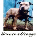 Garner's George