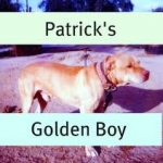 Patrick's Golden Boy