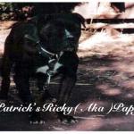 Patricks Ricky