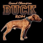 Gr Ch S.t.p.\'s (Patrick\'s) Buck Rom
