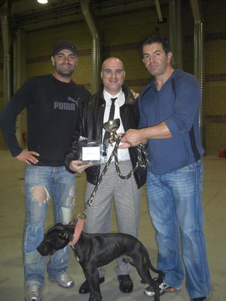 Marco, Giovanni Tiberi and Paulie Mercado