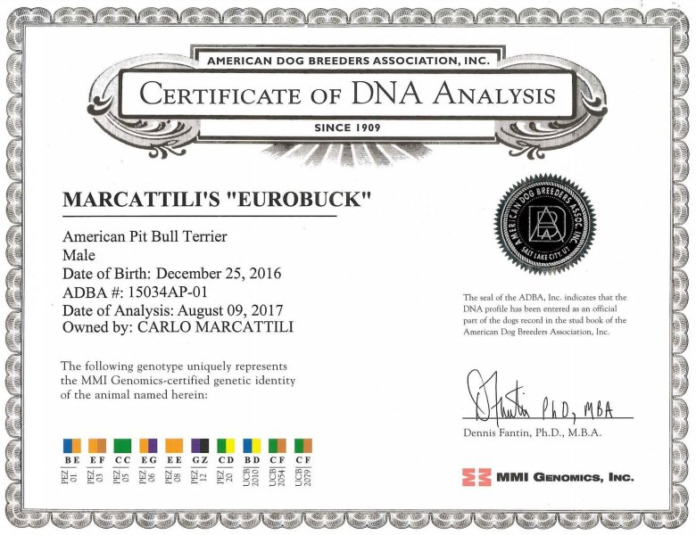 Central Coast Kennel's Eurobuck Certificate Of DNA Analysis