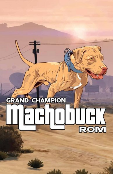 Gr. Ch. Evolution Kennel's Machobuck Rom