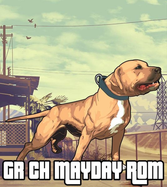 Gr. Ch. Southern Kennel's Mayday Rom