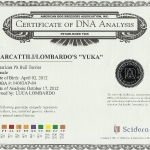 Yuka Certificate DNA Analysis
