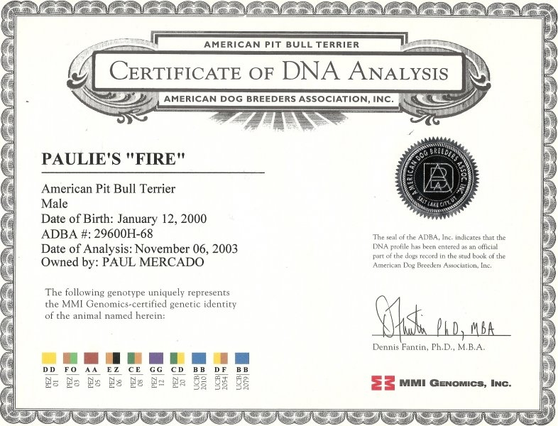 Paulie's Fire Certificate Of DNA Analysis