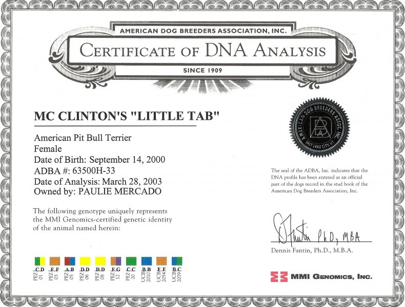 Mc Clinton's Little Tab Certificate Of DNA Analysis