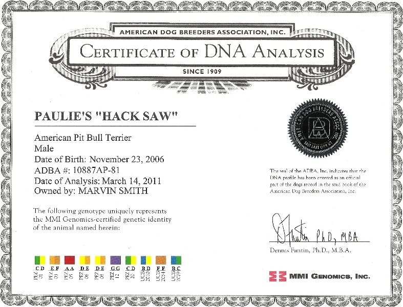 Paulie's Hack Saw Certificate Of DNA Analysis
