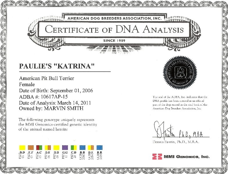 Paulie's Katrina Certificate Of DNA Analysis