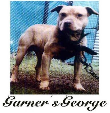 Garner\'s George