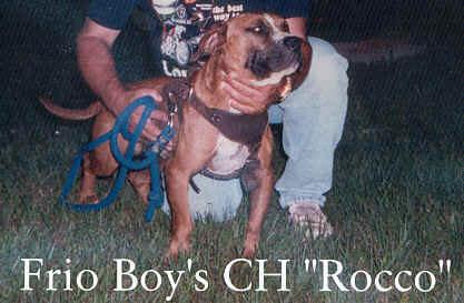 frio-boy's-ch-rocco