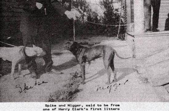 spike-niger-1922