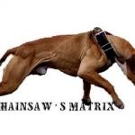 Crenshaw\'s Gr Ch Matrix