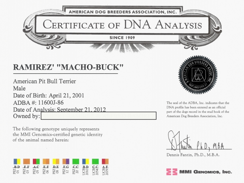 Ramirez' Machobuck Certificate Of DNA Analysis