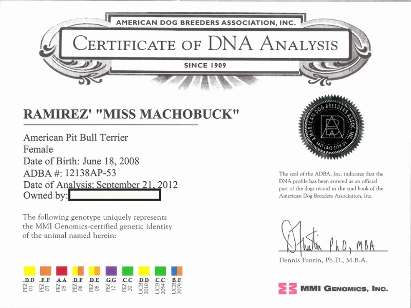 Miss Machobuck Certificate Of DNA  Analysis